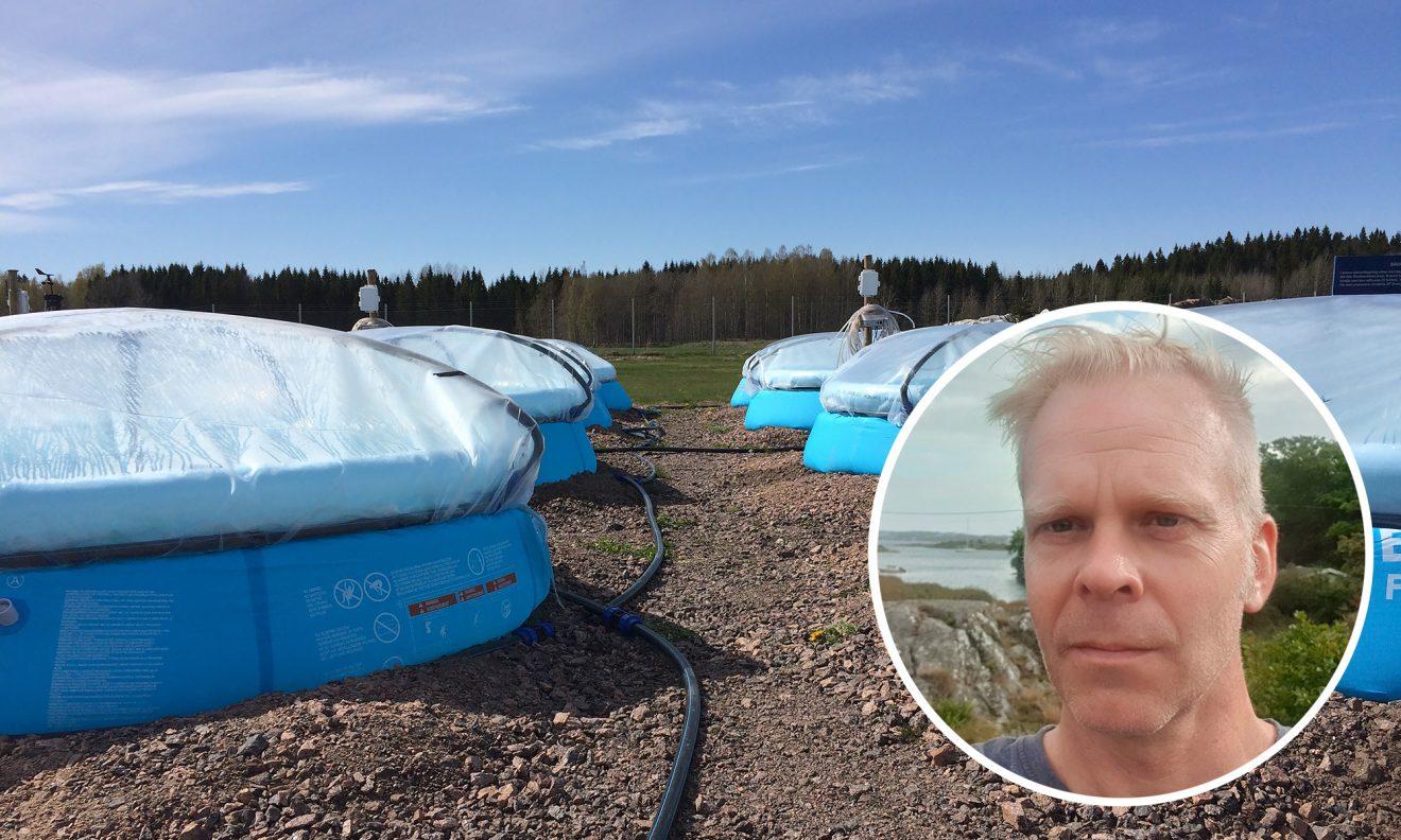 Från alger i barnpooler till rening av tungmetaller