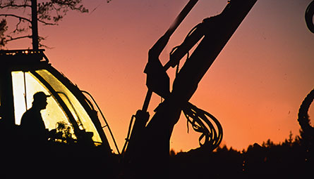 Bland entreprenörerna i skogen kan löneavtalen innehålla lite vad som helst. Foto: SIAS ARKIV