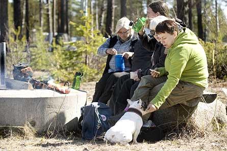 Agneta Björkén, i grön tröja, äter lunch tillsammans med sina klasskamrater på Jämtön norr om Luleå. Foto: TOMAS BERGMAN