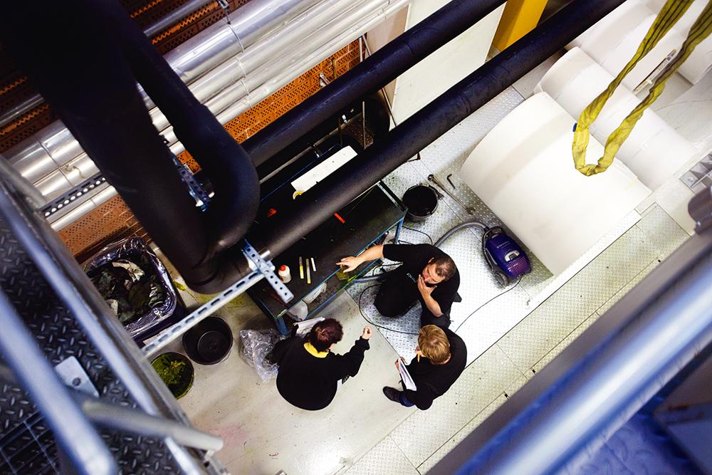Vy från tryckpressens topp. Skyddsombudet Mikael Hammarberg med Kerstin Flood och Eva Christensen på bottenplanet vid en vagn med flaskor.  Foto: Maria Eilertsen