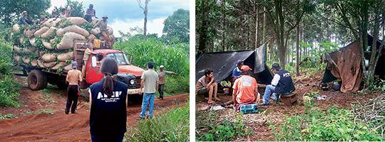 Plantagearbetarna i Argentina rekryteras av Adecco och Manpower. De bor ofta i tält eller plåtskjul och har inte möjlighet att själva ta sig ifrån platsen. Vid razzior har det framkommit att de har anställts med usla villkor.  Foto: PRENSA AFIP